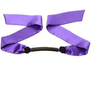 Purple Silk Mouth Gag